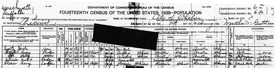 1920 Federal census. George Gass is listed on the last line visible.