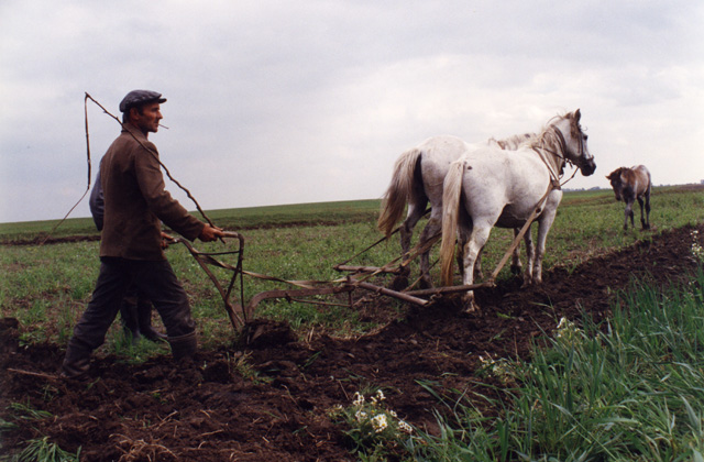 A farmer plowing his field abutting a killing field memorial. Do his thoughts ever dwell on the massacre that occurred here?